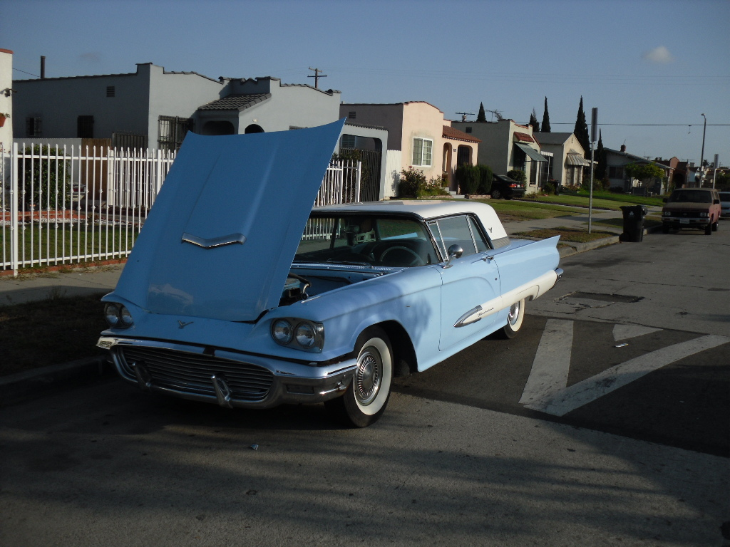 Another RogerAllDay 1959 Ford Thunderbird post... - 13392059