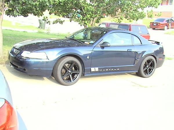 Another TrueBlue01 2001 Ford Mustang post... - 13829081