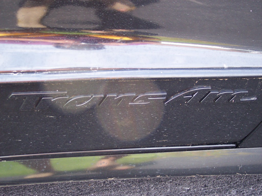 Another Cookie93 1993 Pontiac Trans Am post... - 13835761