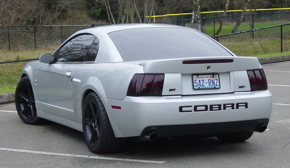 03svtsnake 2003 Ford Mustang Specs Photos Modification