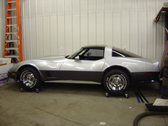 Another Darryl81 1981 Chevrolet Corvette post... - 9620591