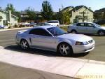 Another plyboy03232 2003 Ford Mustang post... - 9621659