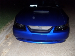 BluestangGT187s 2004 Ford Mustang