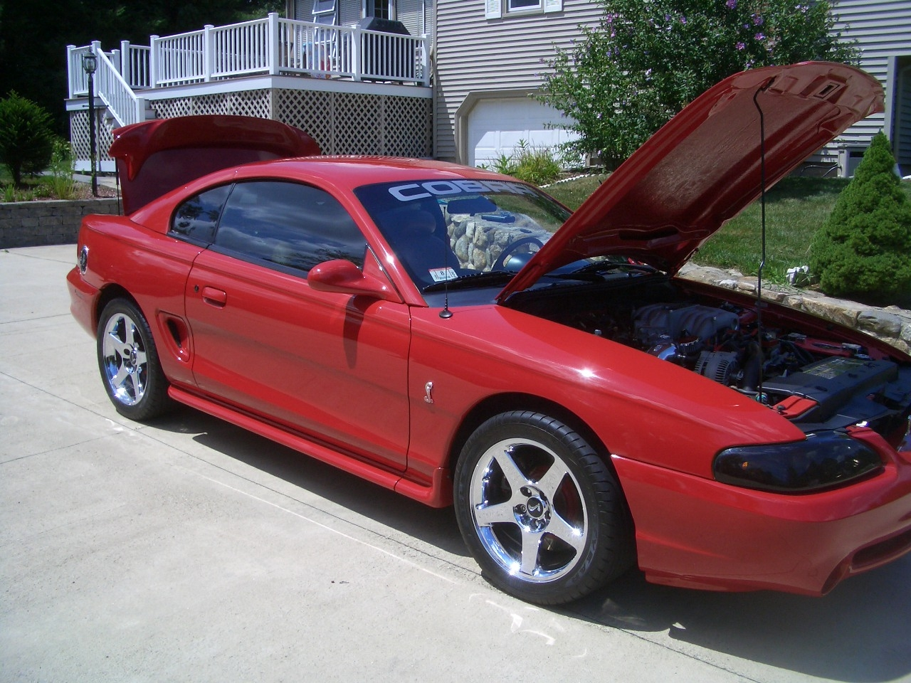 jobe3636 1995 ford mustang specs photos modification. Black Bedroom Furniture Sets. Home Design Ideas