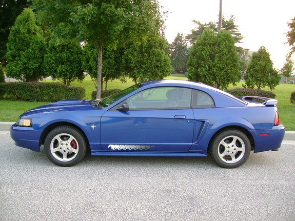 Another Stang-Girl_55564 2003 Ford Mustang post... - 9761800