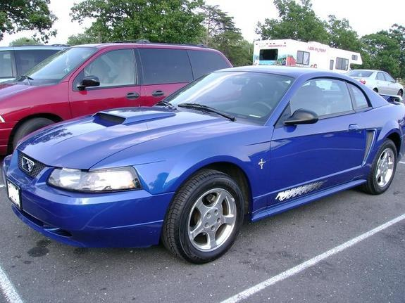 Sell used 2003 ford mustang w/ pony package runs great!! Zinc.