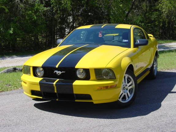 Another Lampoon 2005 Ford Mustang post... - 9792939