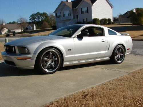 SQ_Eleanor 2005 Ford Mustang