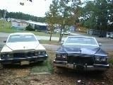 Another caddy77-80-95 1980 Cadillac DeVille post... - 9861715