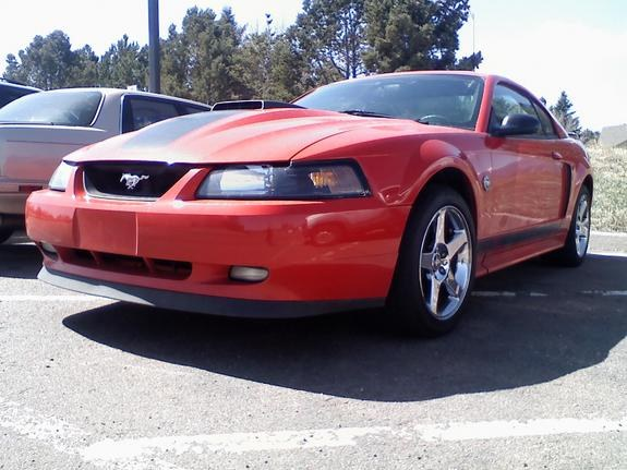 Another rrr5791 2004 Ford Mustang post... - 9881654