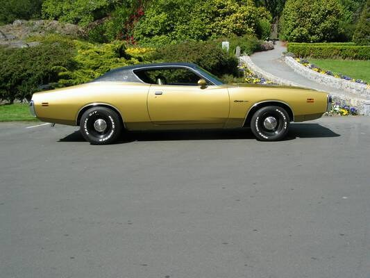 Another DS-girl 1971 Dodge Charger post... - 9933107