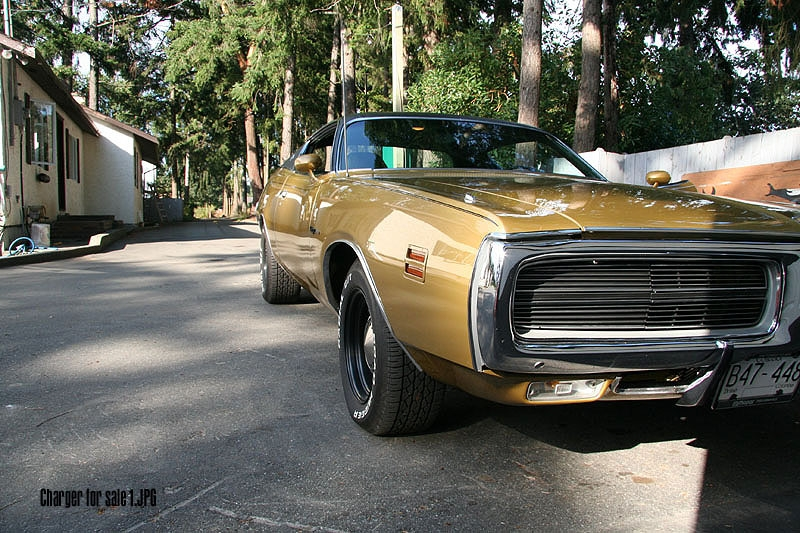 Another DS-girl 1971 Dodge Charger post... - 9933145