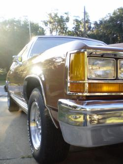 Pester351 1984 Ford LTD Crown Victoria