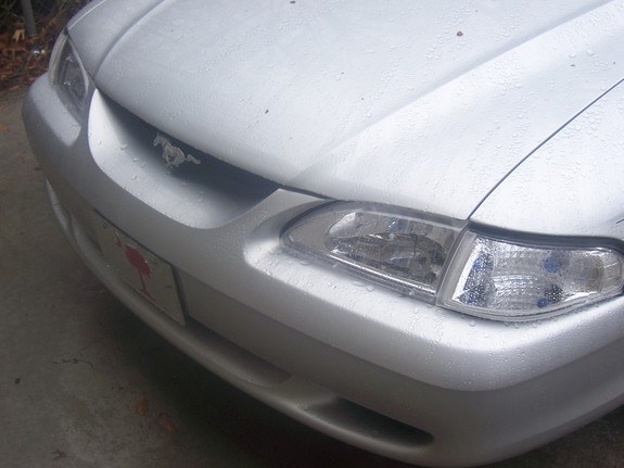 Another MustangHeather98 1998 Ford Mustang post... - 10024285