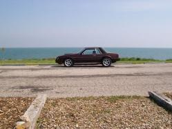 81pony 1981 Ford Mustang