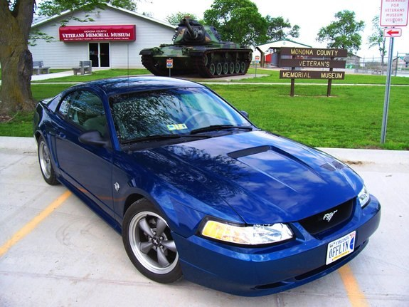 mcfarway 1999 Ford Mustang 10057217