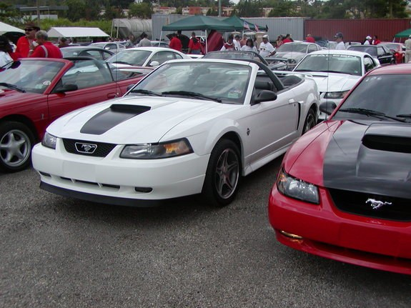 Another jamarod 1999 Ford Mustang post... - 10087994