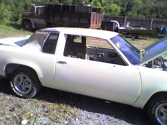CUTLASSONDAVINS 1987 Oldsmobile Cutlass Supreme 10096491