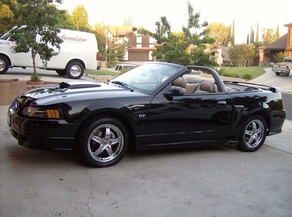 Another black06 2003 Ford Mustang post... - 10096779