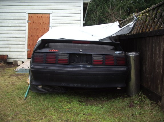 Another 911escortGT 1988 Ford Mustang post... - 9174694