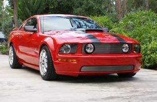 Another NaplesBill 2006 Ford Mustang post... - 10120172