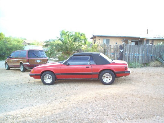 Another 8338Mustang 1983 Ford Mustang post... - 9100019