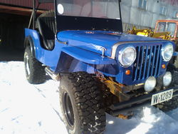 pellemoes 1953 Jeep Willys
