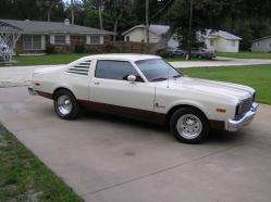cooplindal 1979 Plymouth Volare