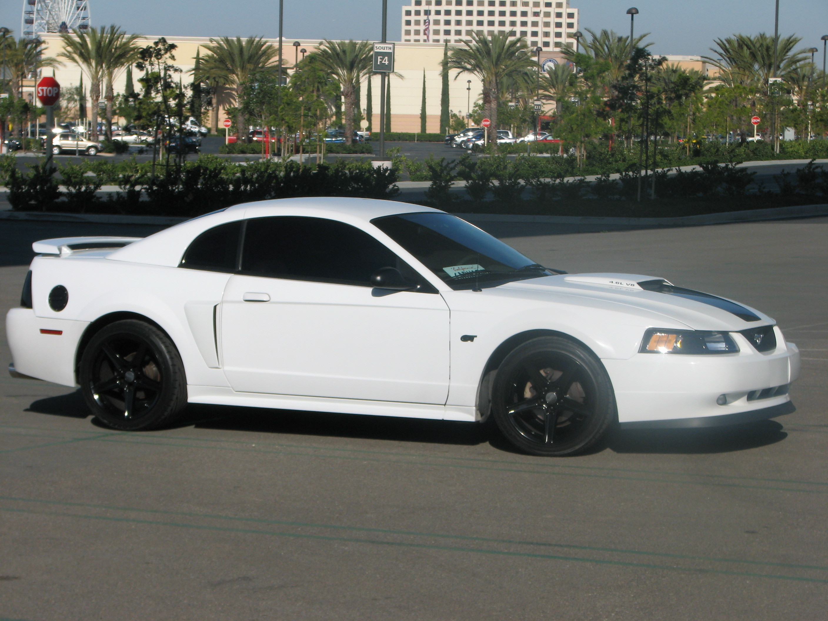 Gt Mustang Ftw 2001 Ford Specs Photos Modification Info At Fuel Filter 26796990048 Original