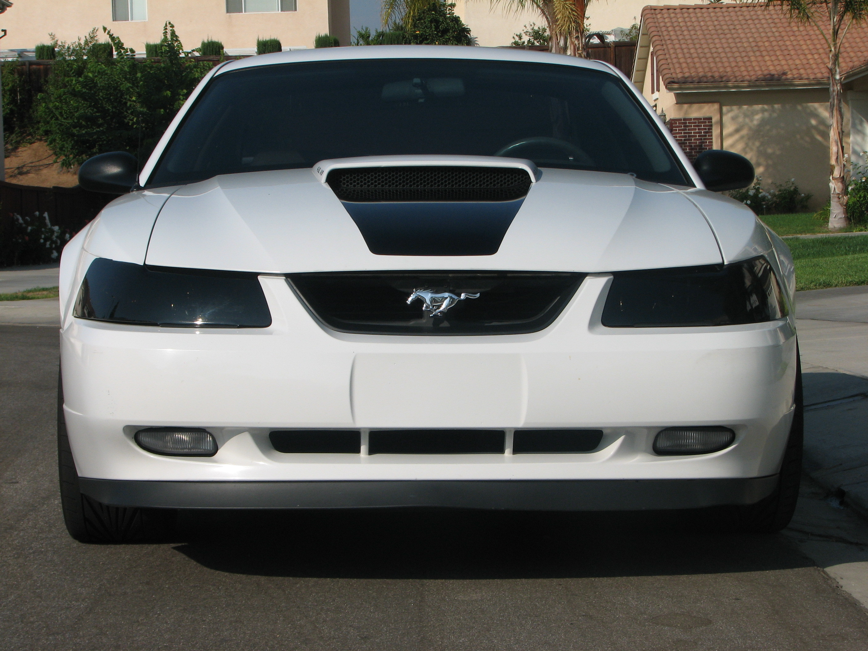 GT Mustang FTW 2001 Ford Mustang Specs s Modification Info at