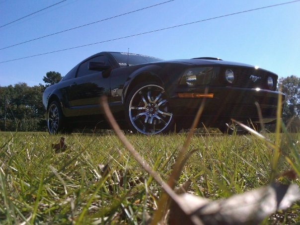 Another MustangChuckHRC3 2008 Ford Mustang post... - 14654524