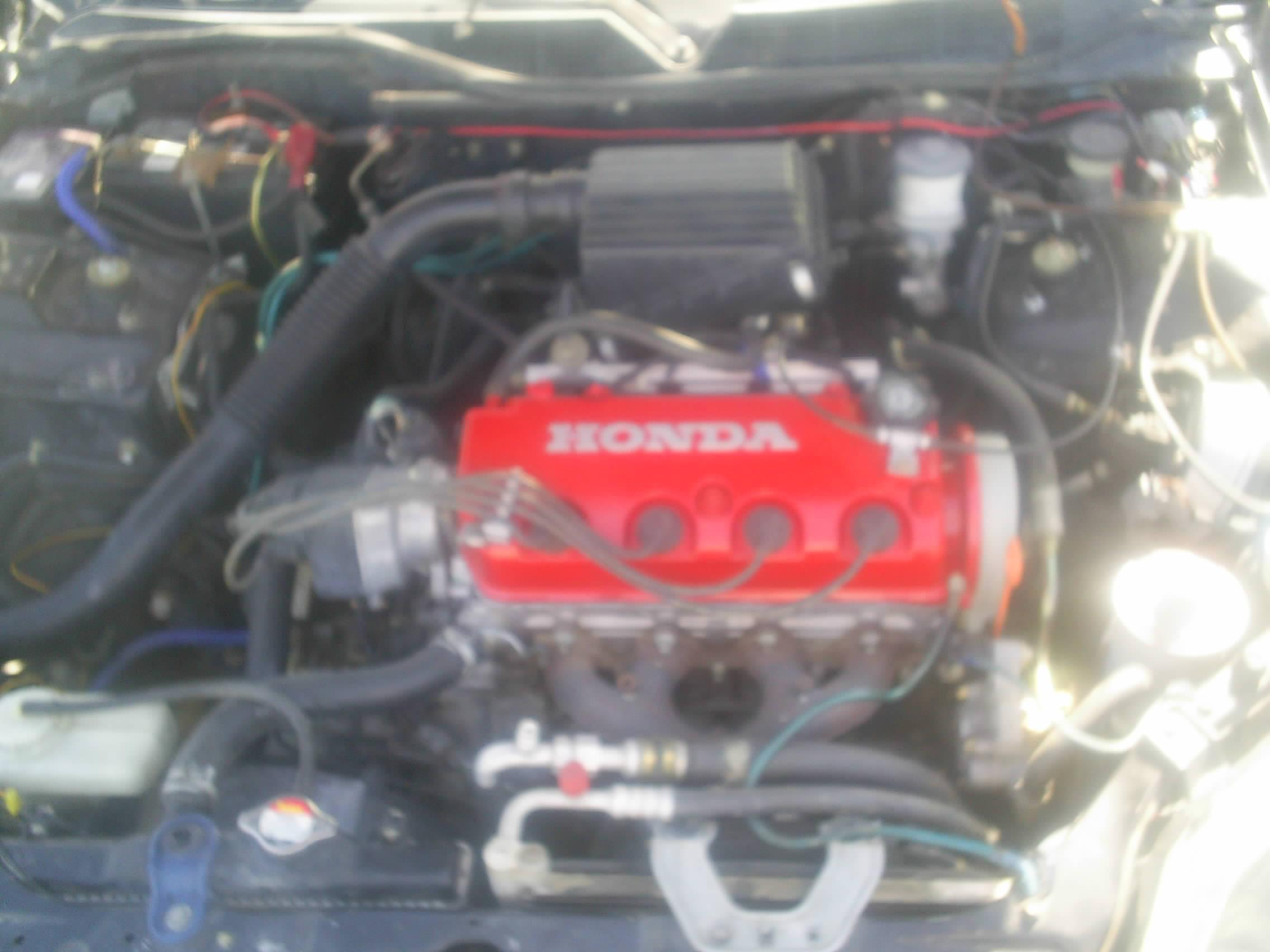 rafa_23 1998 Honda Civic 13846496