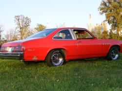 77larks 1977 Buick Skylark