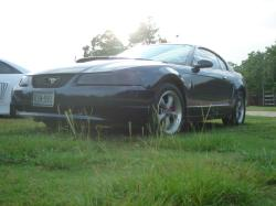 truebluebullitts 2001 Ford Mustang