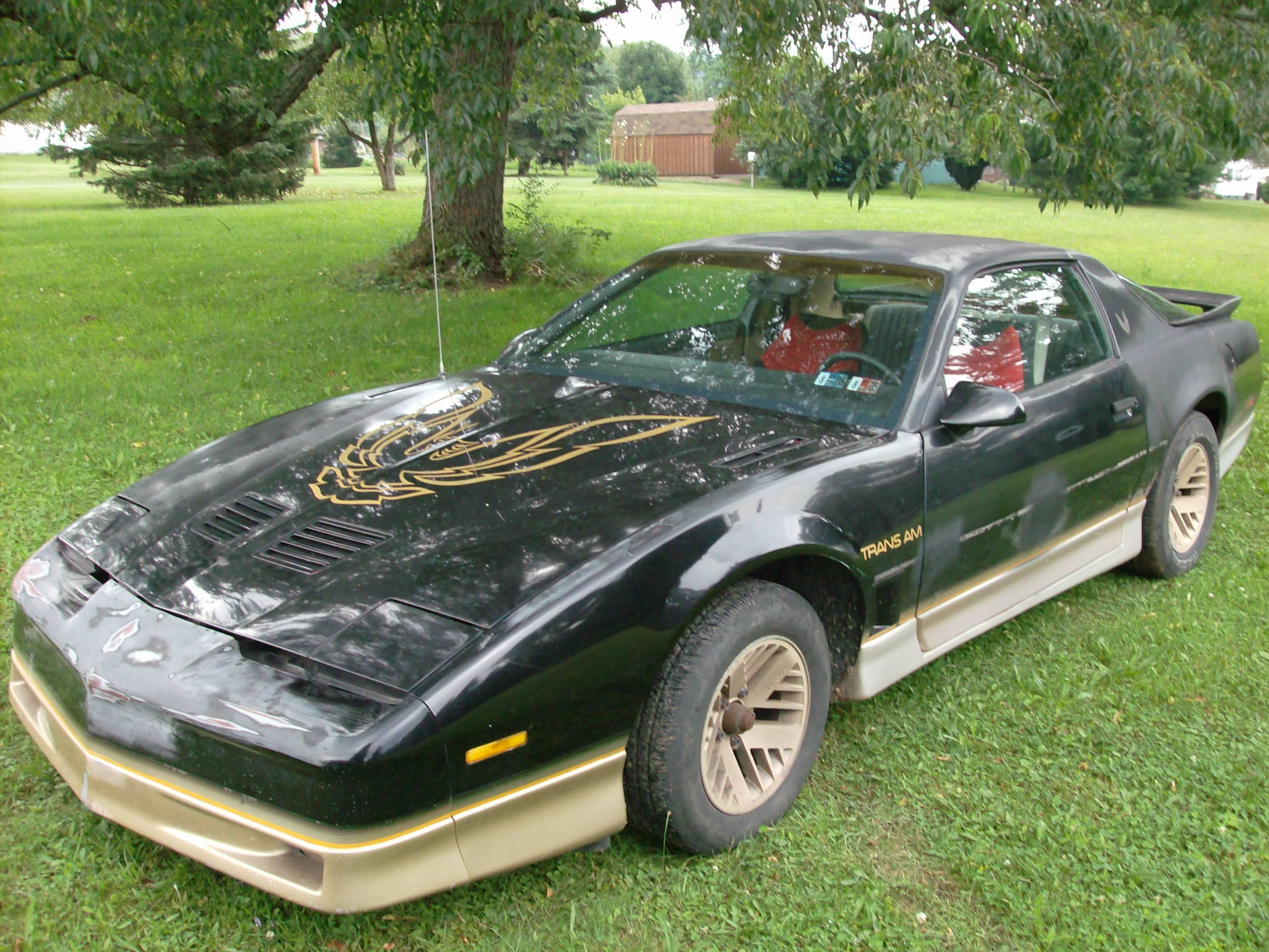 101btp 1986 Pontiac Trans Am Specs Photos Modification Info At Cardomain