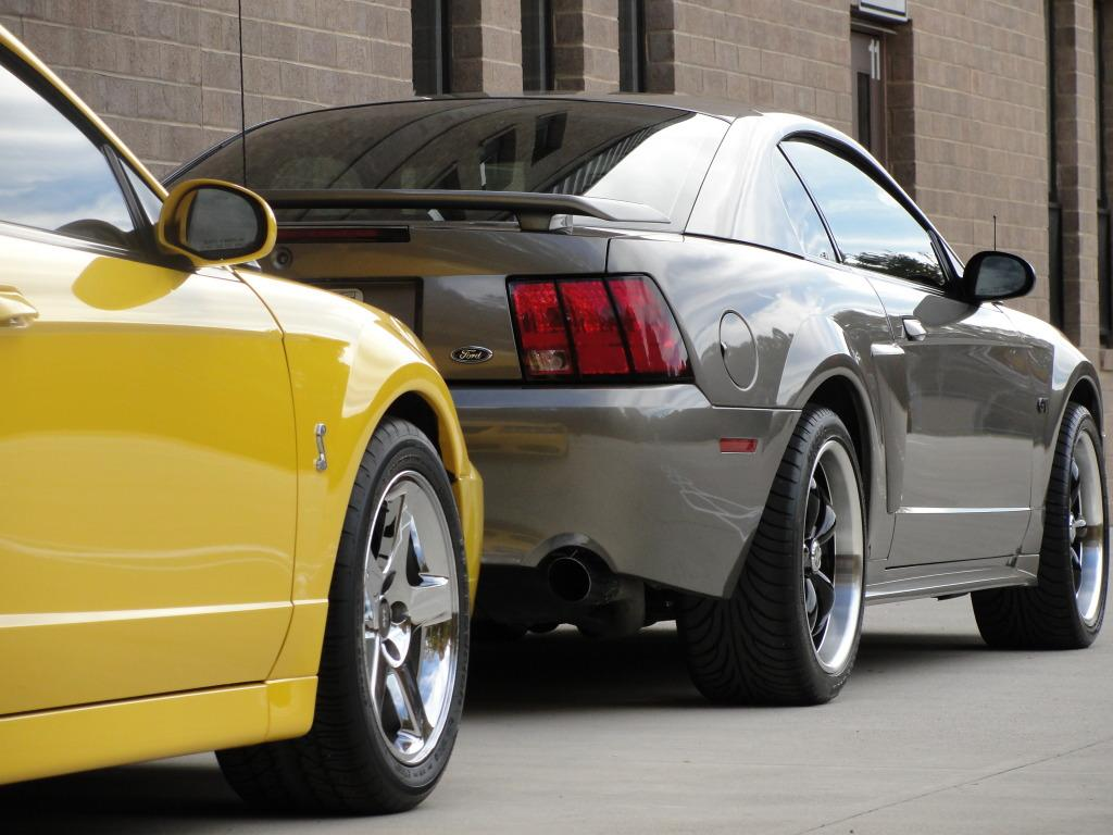 Dominican7 2002 Ford Mustang