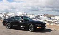 bullitt194s 2008 Ford Mustang