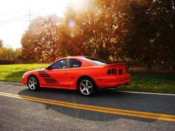 Orange Stangs 1996 Ford Mustang