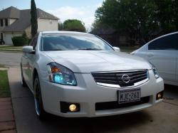 maxima2008ses 2008 Nissan Maxima