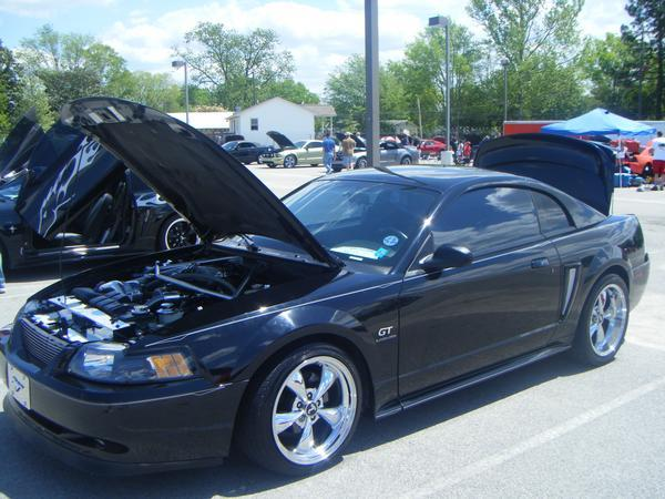 Another jgc_saleen 2000 Ford Mustang post... - 13912753