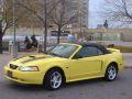 saultchiefs 2000 Ford Mustang