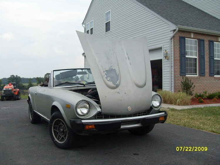 4nella's 1981 Fiat Spider