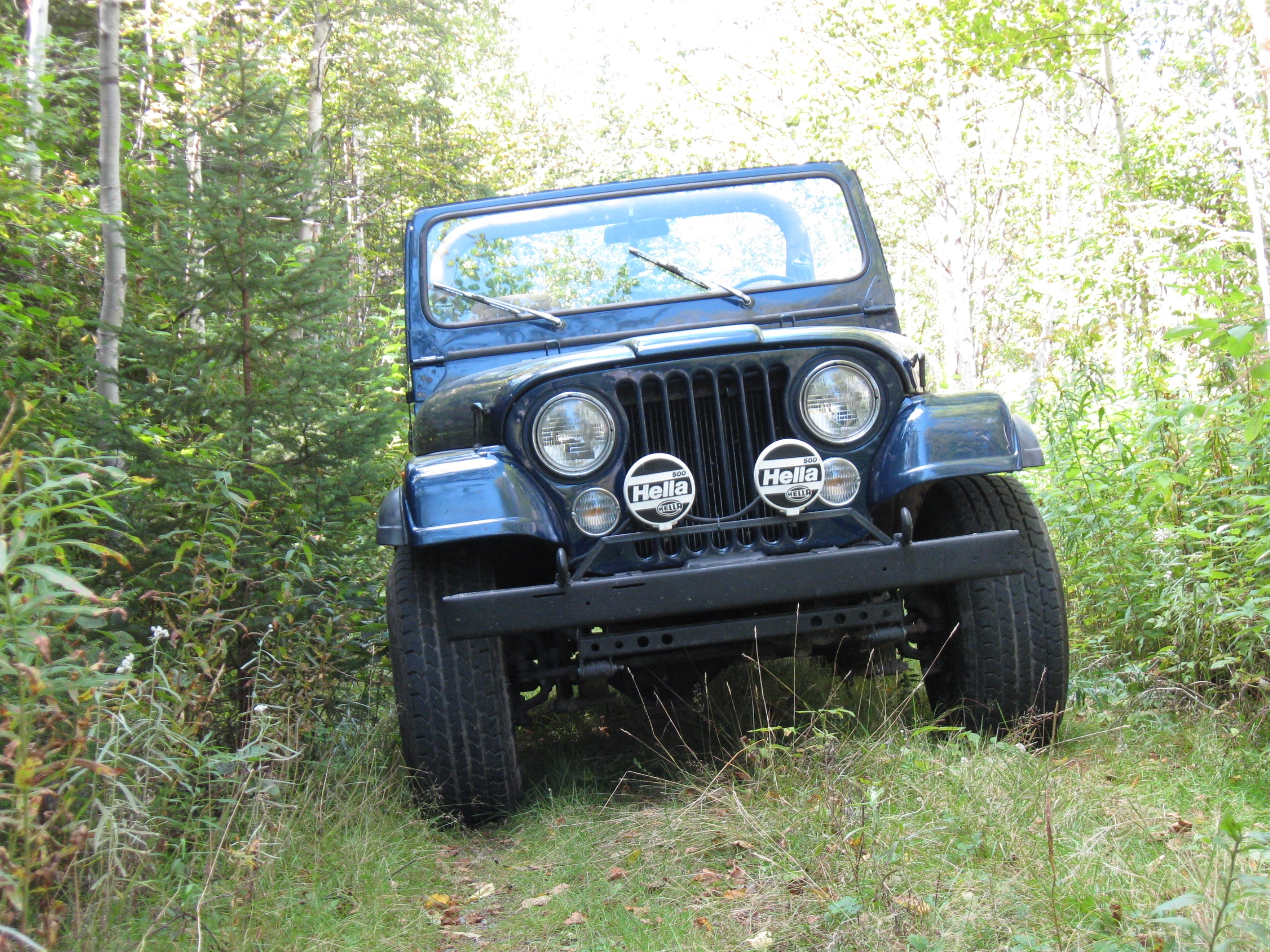 Another frozzen 1981 Jeep CJ7 post... - 13935251