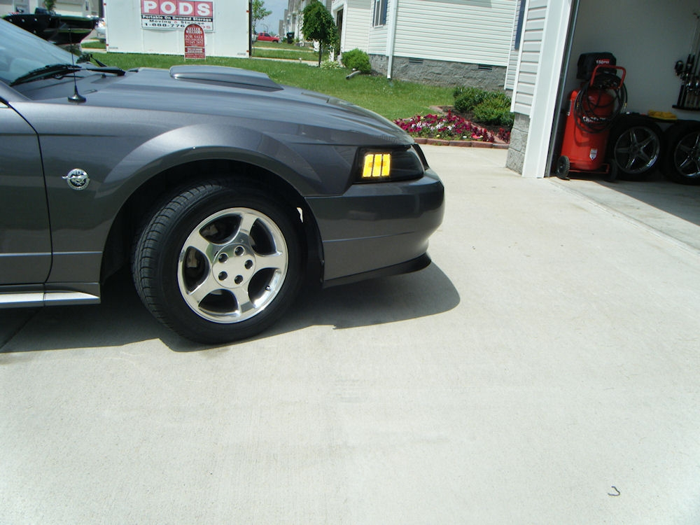 blissfulerin 2004 Ford Mustang 13940607