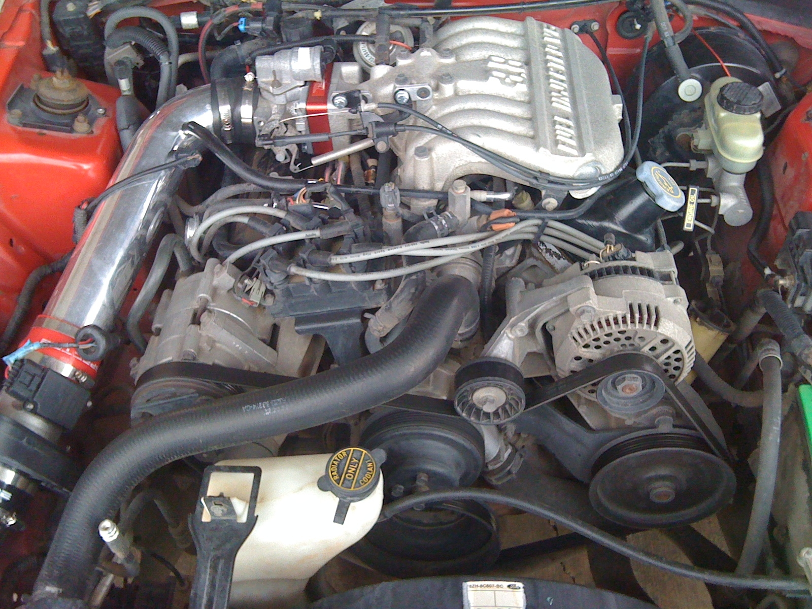 Another joeyc5 1998 Ford Mustang post... - 13946038