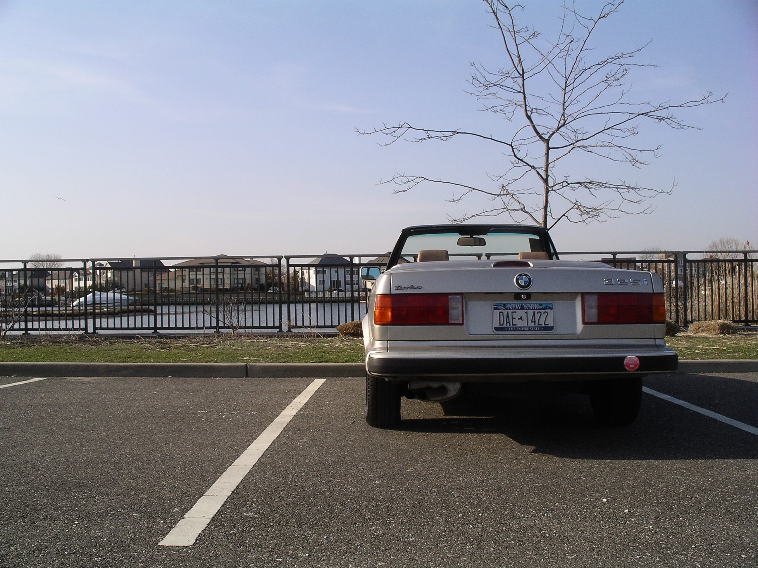 Another JanusCarrera 1989 BMW 3 Series post... - 13958891