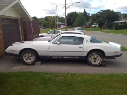 import_fan7s 1979 Pontiac Firebird