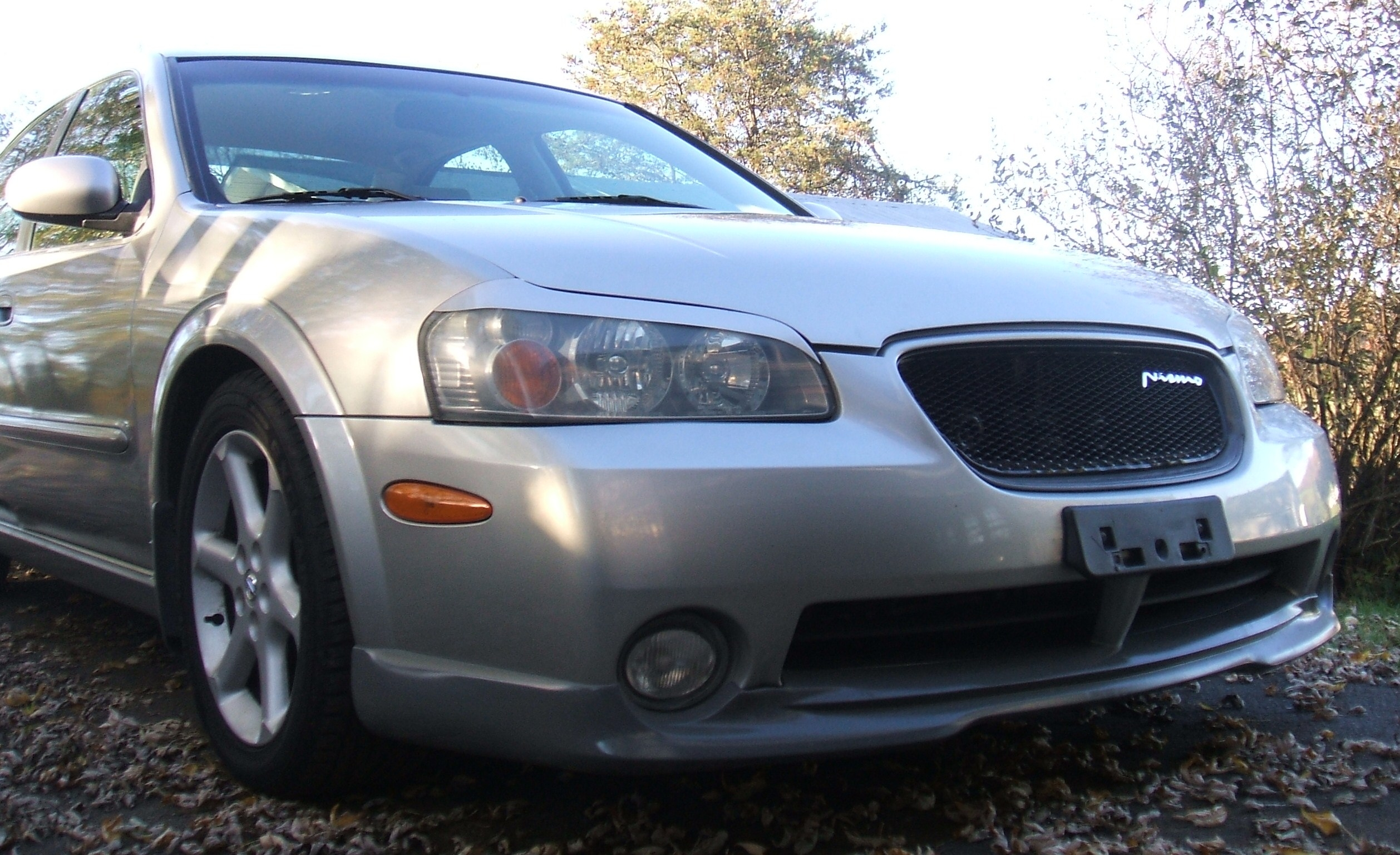 Another ChrisGregg 2003 Nissan Maxima post... - 13983638