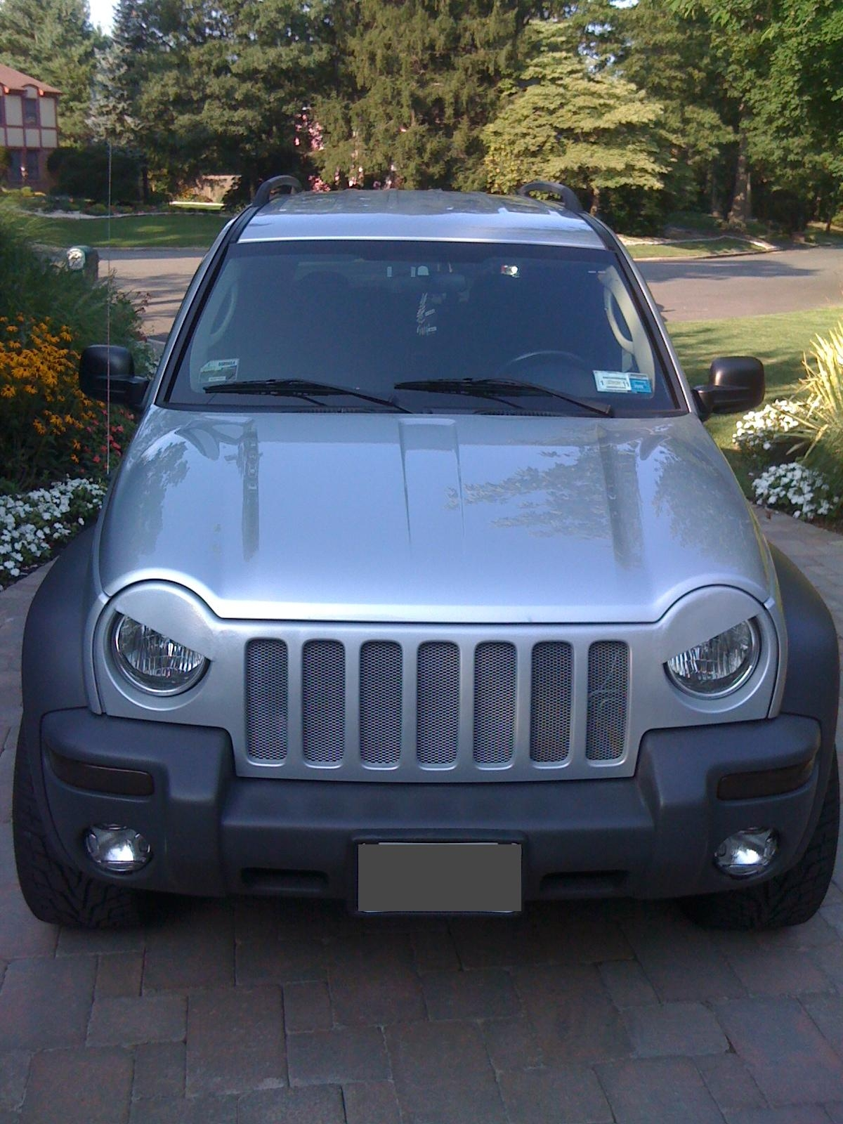 Another dtviper27 2003 Jeep Liberty post... - 14000204