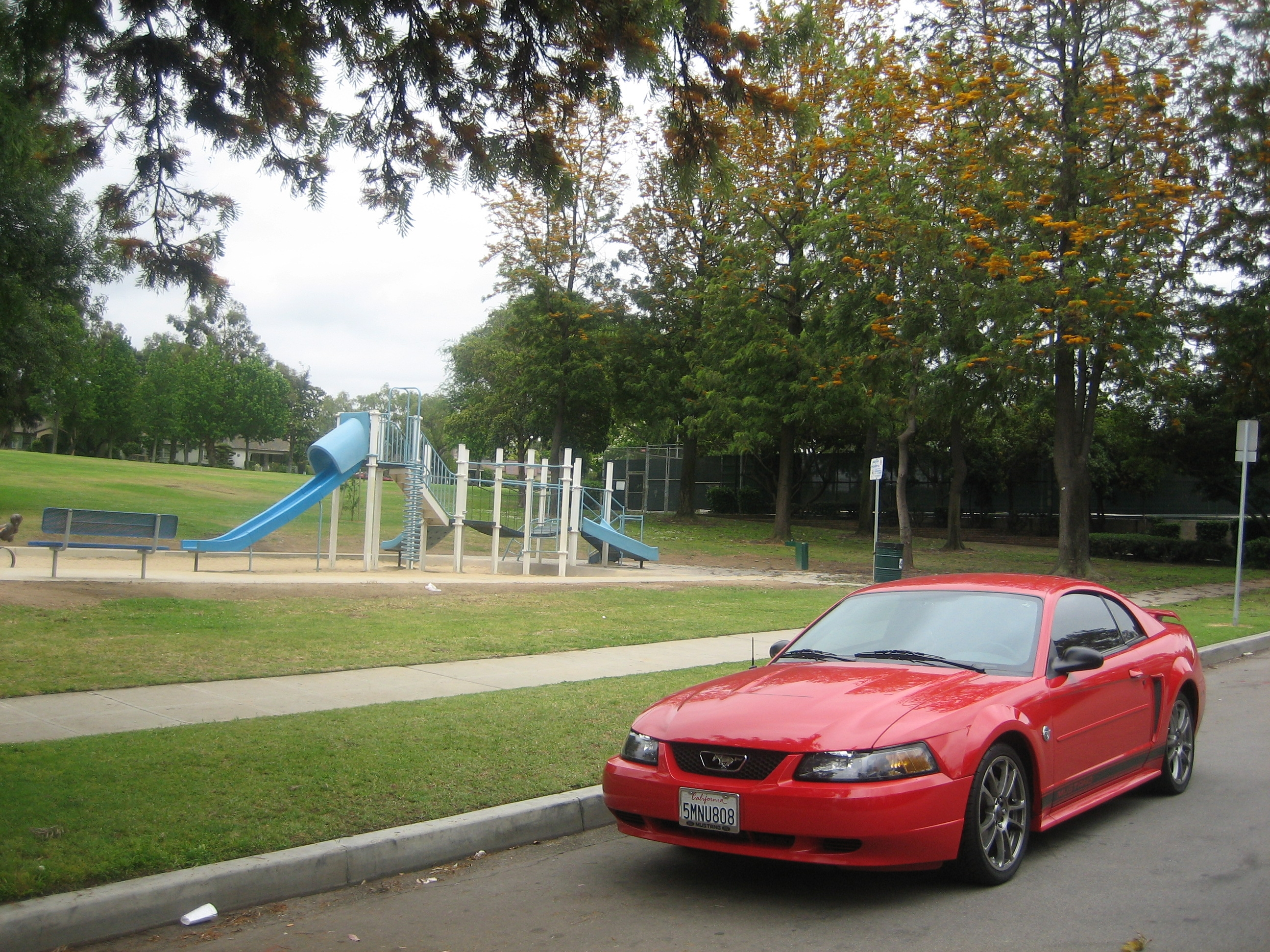 Another trmustang 2004 Ford Mustang post... - 14001955